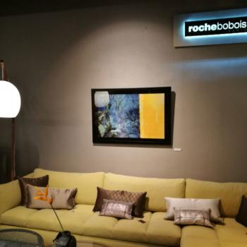 Expo Roche Bobois le 2 mars 2017
