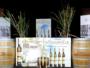 Fleuron d'Oxenham Craft Distillery  reconnu à l'échelle internationale