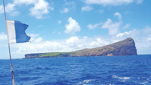 Catamaran : Escapade vers les îles du Nord