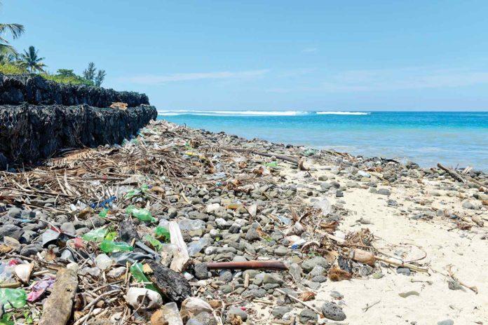 Belle Verte : Pour une île Maurice propre et verte