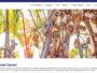 10 sites internet qui font honneur au savoir-faire 100 % mauricien