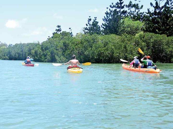 A la découverte de l'île d'Ambre en kayak