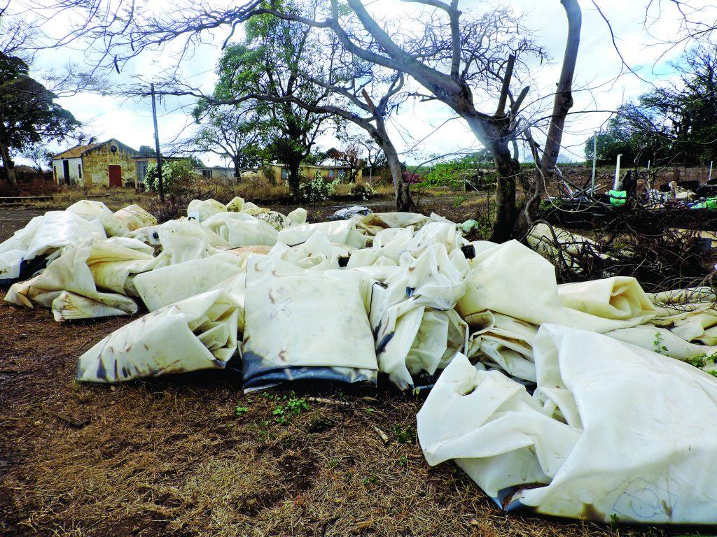 Baz Récup' : Quand vos déchets reprennent vie