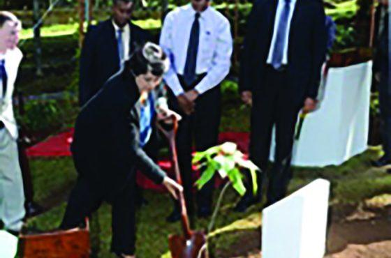 State House – MWF Un jardin endémique en hommage à Gabriel D'Argent