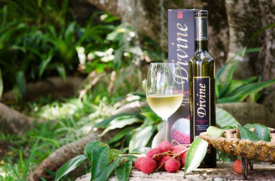 Divine: Le vin bien de chez nous