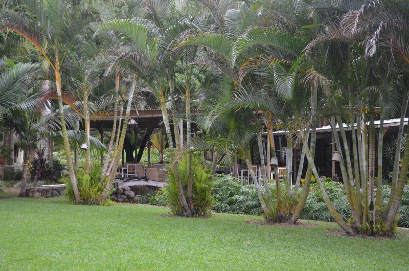 Halte apaisante au Domaine de Chazal Ecotourism