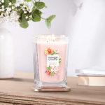 Elevation Hibiscus Rose