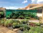 Avec Espace Maison, mettez du vert dans votre intérieur !