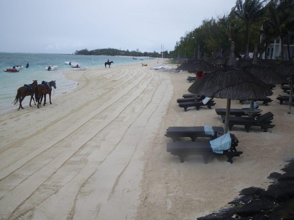 Beach Cleaner Initiative: Une plage propre et saine