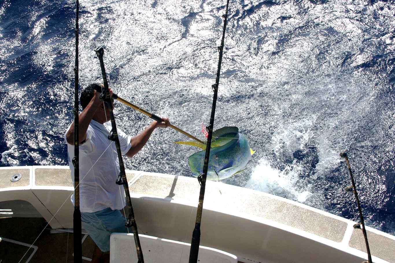Pêche au gros à Maurice