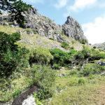 La Montagne Longue dans la vallee de St Francois