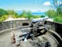 A l'ombre des filaos, la tour Martello tient toujours