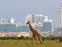 Nairobi: une vraie destination
