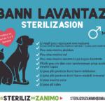 Sterilization-advantages4