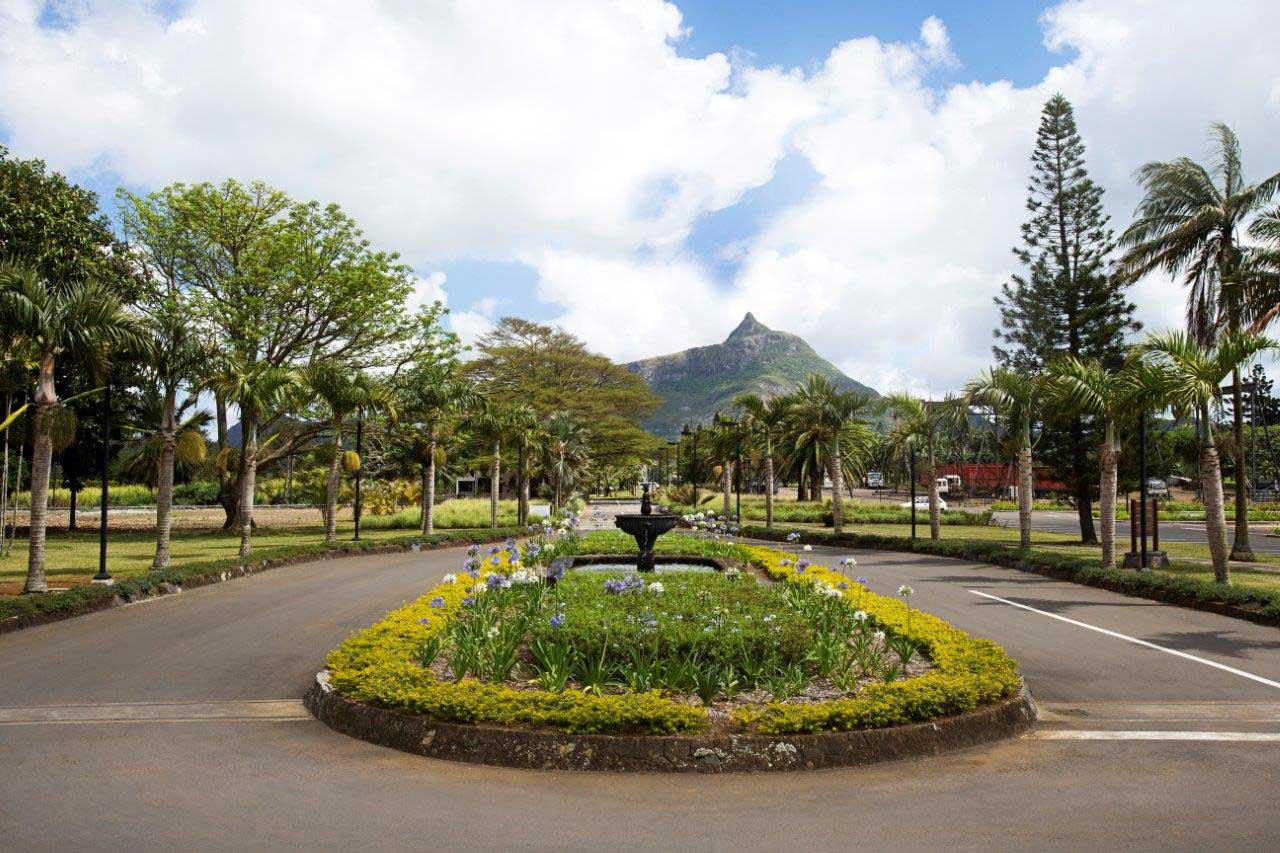 Vivea Business Park île Maurice vu du Pouce