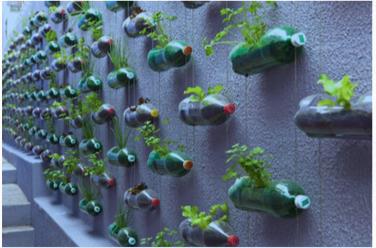 ClimArT : L'Art à la rescousse de l'environnement