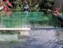 10 raisons d'opter pour une piscine béton de BPL