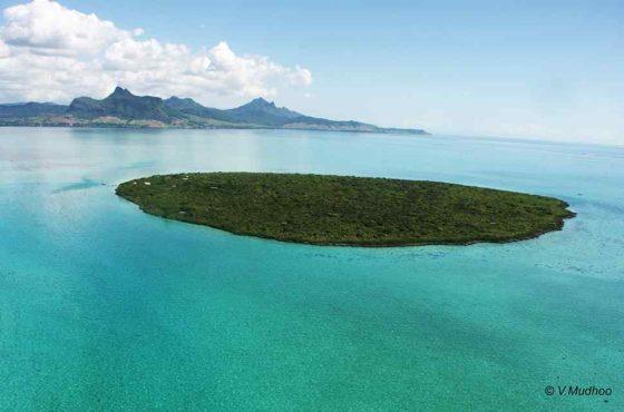 L'île aux Aigrettes