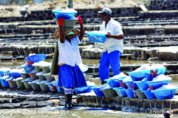 Patrimoine: Les salines de Tamarin laissées à l'abandon